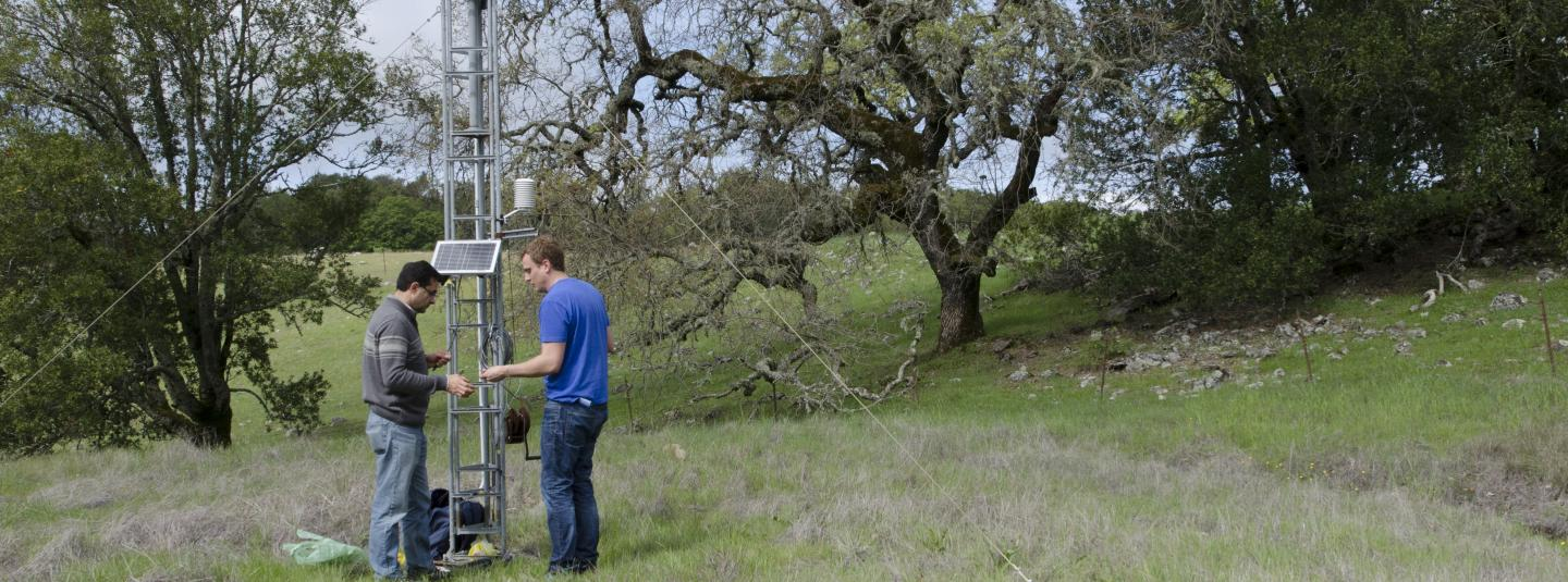 A student and professor work on a monitoring tower in the field with oak and other trees in the background