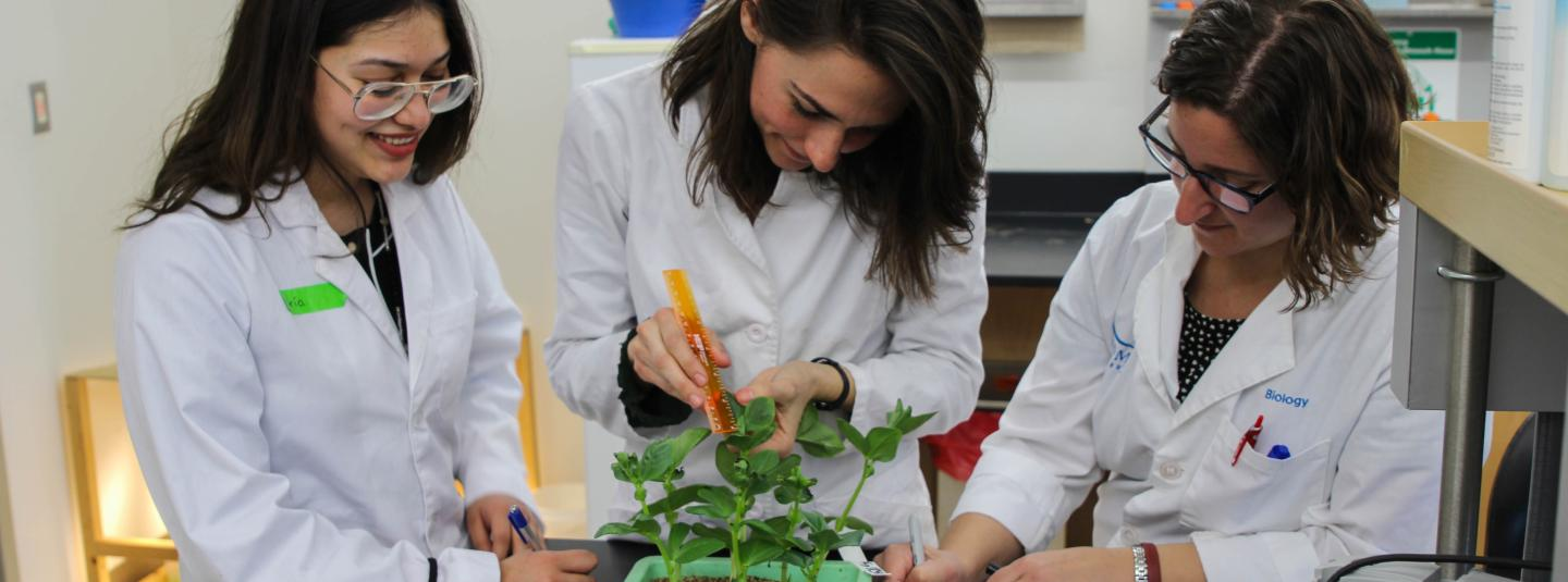Biology professor and two students measuring plant growth and taking notes in a lab